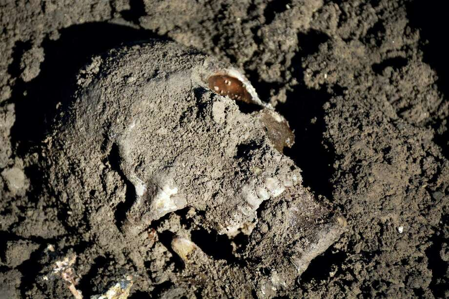 This image released by the the Mass Graves Directorate of the Kurdish Regional Government shows a human skull in a mass grave containing Yazidis killed by Islamic State militants in the Sinjar region of northern Iraq in May 2015. An analysis by The Associated Press has found 72 mass graves left behind by Islamic State extremists in Iraq and Syria, and many more are expected to be discovered as the group loses territory. Photo: Kurdish Mass Graves Directorate Via AP   / Kurdish Mass Graves Directorate