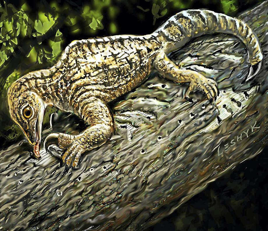 A painting of what Drepanosaurus might have looked like. Photo: COURTESY YALE UNIVERSITY — VICTOR LESHYK