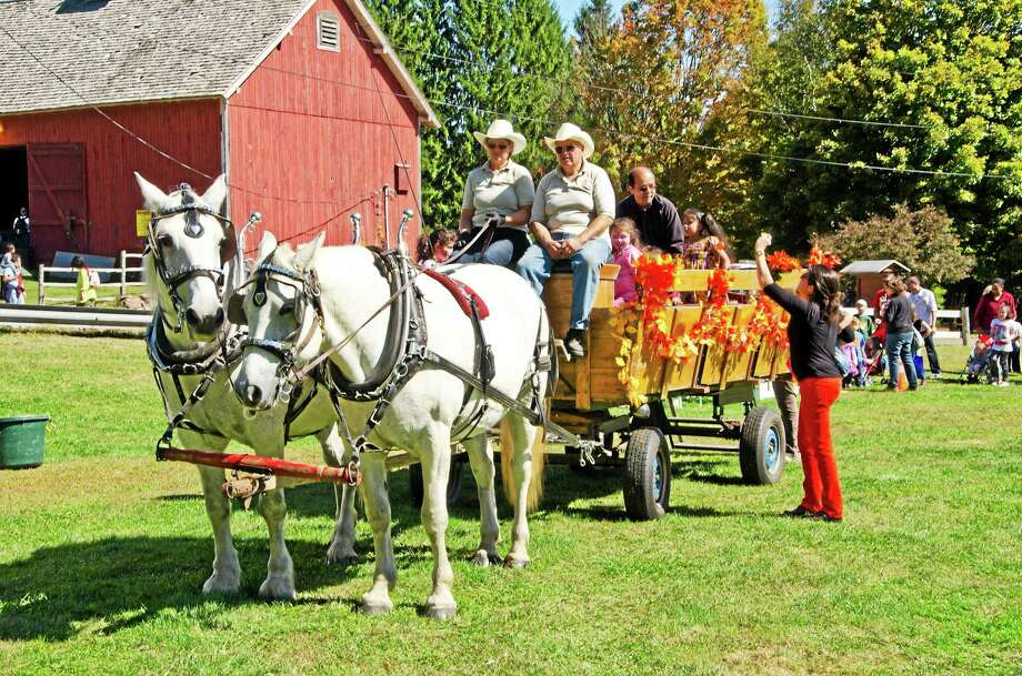 People take a hayride at the 2014 Brooksvale Fall Festival. Photo: Photo Contributed By Liz Frias