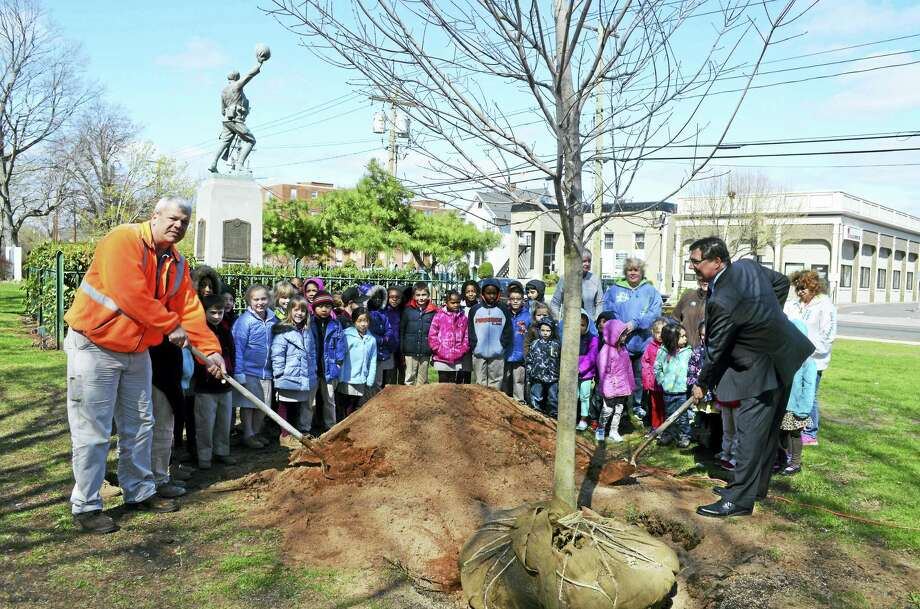 West Haven Assistant Commissioner of Public Works Mark Paine, who will be honored Monday, plants a tree (with Mayor Ed O'Brien and kids from St. Lawrence School) on Arbor Day, April 24, 2015. Photo: CONTRIBUTED Photo — Mike Walsh/City Of West Haven