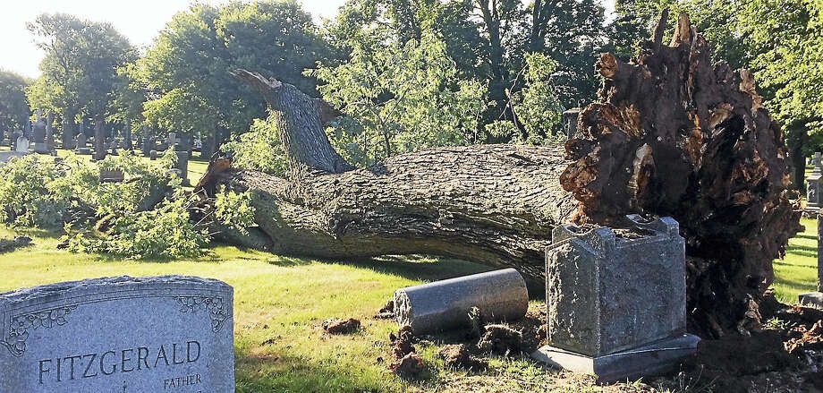 Gusty winds and powerful thunderstorms brought this large tree crashing down into Evergreen Cemetery in New Haven early Monday evening, damaging at least a few headstones. The storms swept through the region quickly, knocking out power and leaving behind a path of destruction. Photo: Wes Duplantier — The New Haven Register