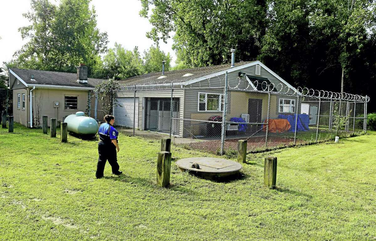 The North Haven Animal Shelter on Universal Drive.