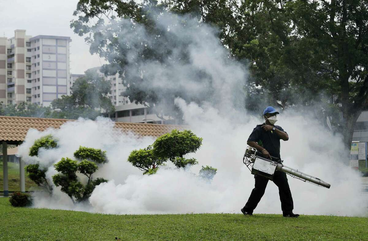 A pest control worker fumigates drains and the gardens at a local housing estate where the latest case of Zika infections were reported from in Singapore.