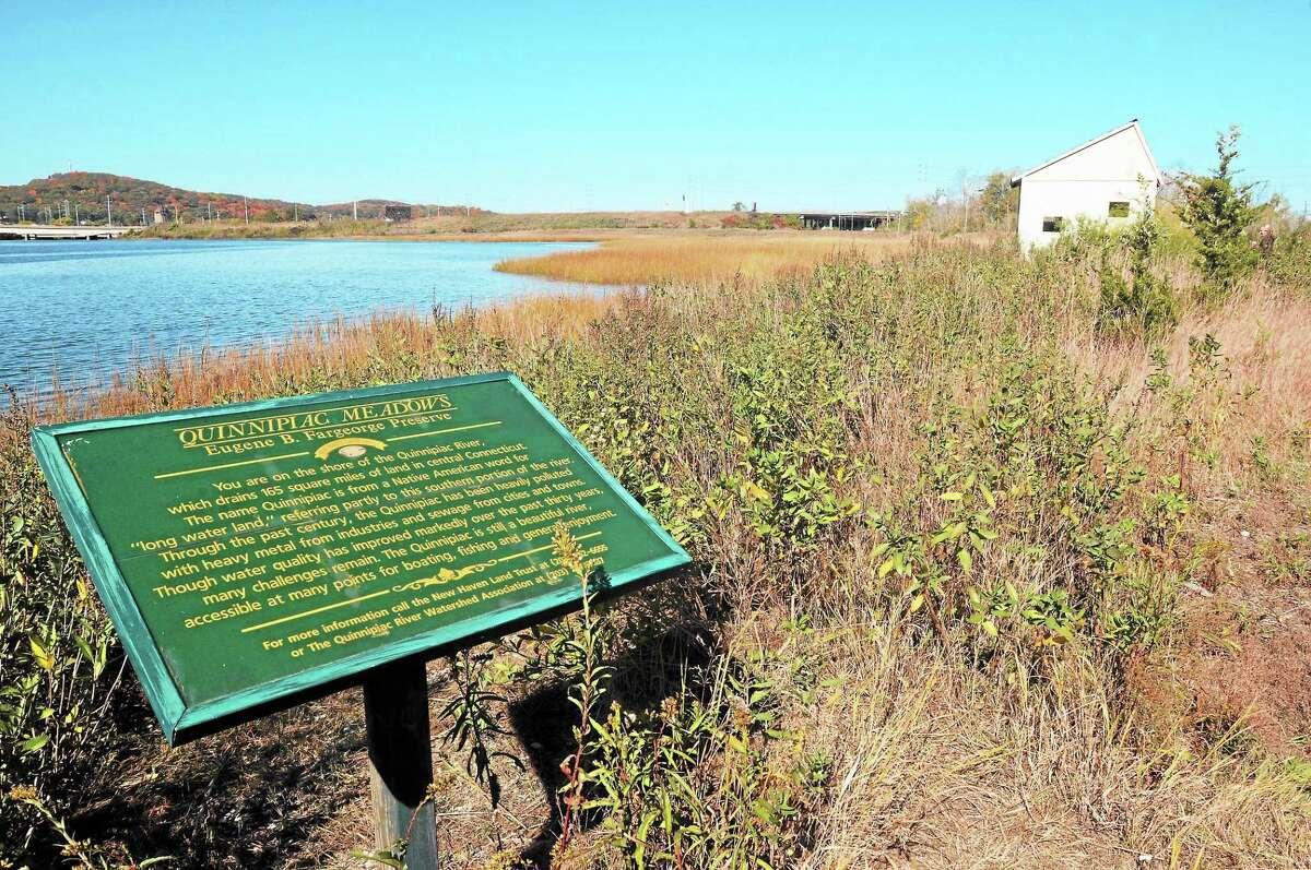 New Haven Land Trust's Quinnipiac Meadows nature preserve.