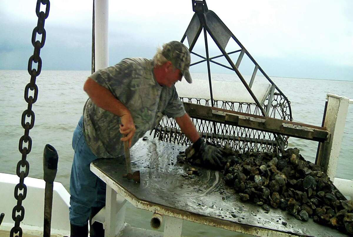 Deckhand John Hoffmann sorts mature oysters from new larvae in Lake of Second Trees in St. Bernard Parish, La.
