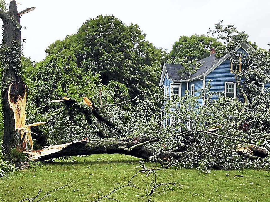 A tornado swept through North Haven Tuesday afternoon, taking down wires and trees like this one on Middletown Avenue. Photo: North Haven Fire Department