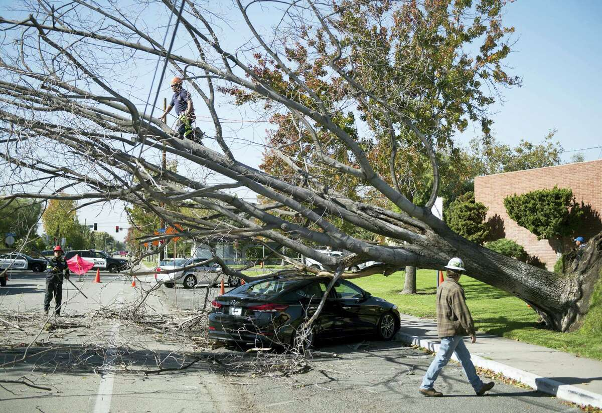 Crews work to clear a fallen tree off a teachers' car outside Orange High School in Orange, Calif., Friday, Dec. 2, 2016. Cold Santa Ana winds swept across Southern California on Friday, raising danger of wildfires and toppling trees onto cars, at least one home and onto a busy freeway just ahead of rush hour. (Kevin Sullivan/The Orange County Register via AP)