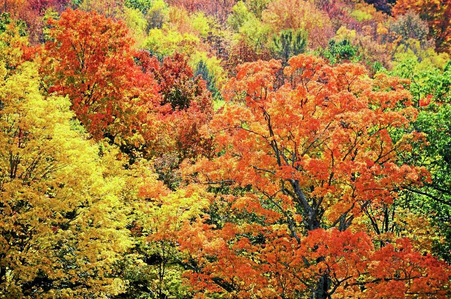 Lenox Mountain (as seen from Richmond) offers spectacular fall colors, Wednesday, Oct. 14, 2015. Bwen Garver — The Berkshire Eagle Photo: Digital First Media File Photo
