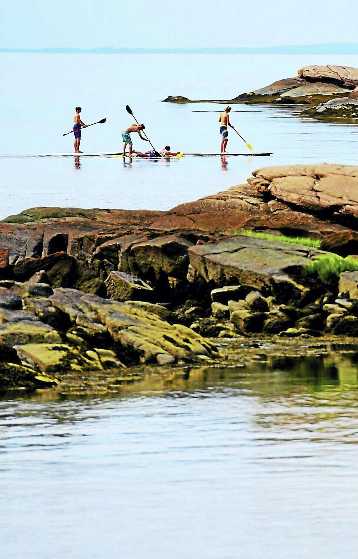 Four boys of summer paddle themselves around near Democrat rock near Shore Road in Branford
