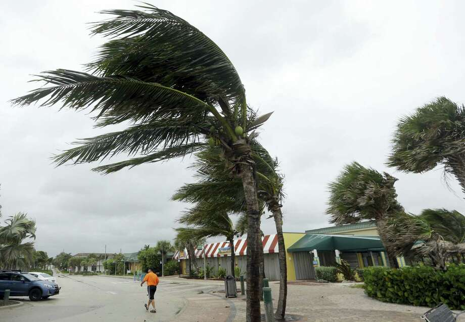 Palm trees sway in high gusts of wind, Thursday, Oct. 6, 2016, in Vero Beach, Fla. Hurricane Matthew continues to make a path for Florida's east coast from the Bahamas. Photo: AP Photo — Lynne Sladky / Copyright 2016 The Associated Press. All rights reserved.