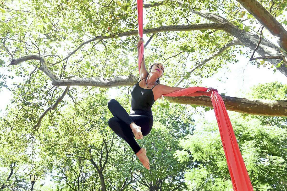 Carla Santana, owner of Aerial Silks Santa Elena, performs from a tree in Wooster Square in New Haven. Santana is visiting from Venezuela.