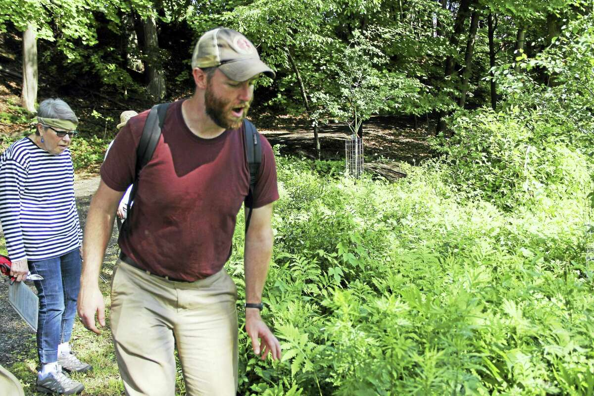 Peter Wyrsch, community forester for the Urban Resource Initiative, points out which plants are native and which are invasive to the urban oasis in New Haven's Edgewood Park.