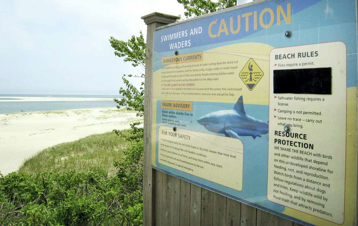 AP Photo/Philip Marcelo In this Wednesday, May 25, 2016, photo, a sign at Chatham Lighthouse Beach beach warns of dangerous currents and sharks in Chatham, Mass. Additional Cape Cod towns have installed the signs this year. Officials and researchers from Cape Cod to the Carolinas are looking at responses ranging from the high-tech to the decidedly low-tech as they deal with a growing great white shark population.