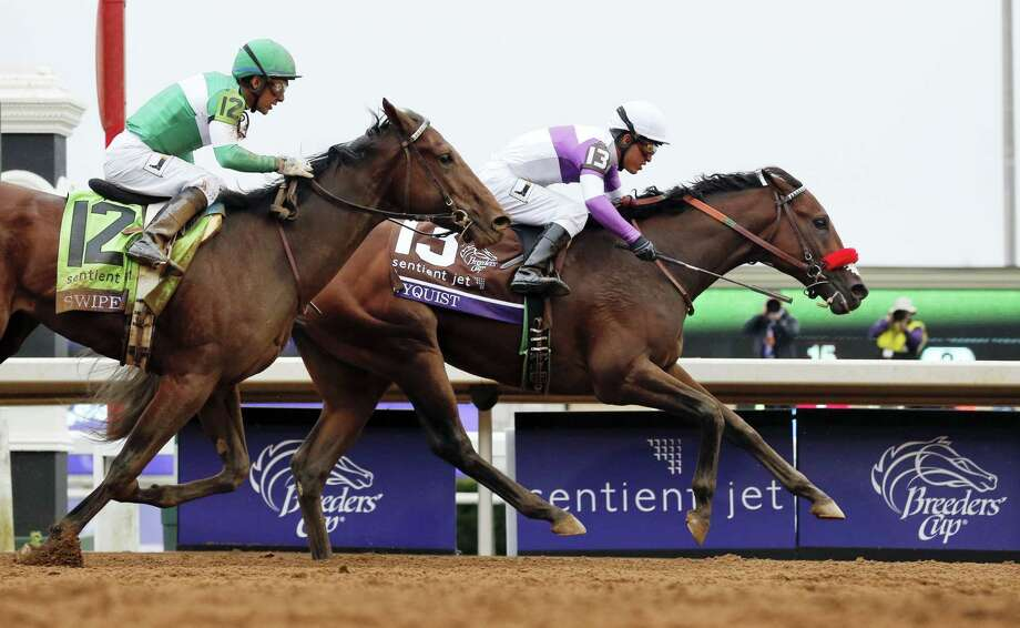 Undefeated Nyquist (13) is expected to the favorite for this year's Kentucky Derby. Photo: The Associated Press File Photo   / Copyright 2016 The Associated Press. All rights reserved. This material may not be published, broadcast, rewritten or redistributed without permission.