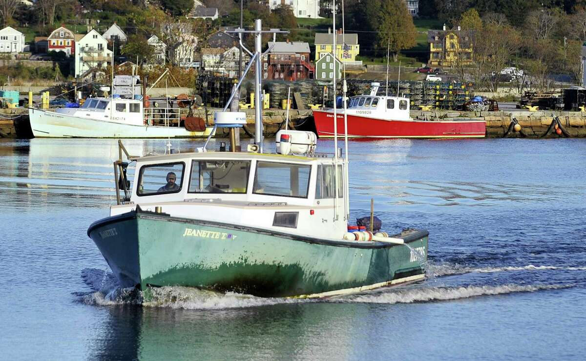 In this Oct. 28, 2011 file photo, lobsterman Mike Theiler brings his boat to dock in New London. A study released in April 2016 says no traces of pesticides were found in lobsters collected in Long Island Sound in late 2014, boosting the theory that elevated water temperatures are the main culprit in a big lobster population decline.
