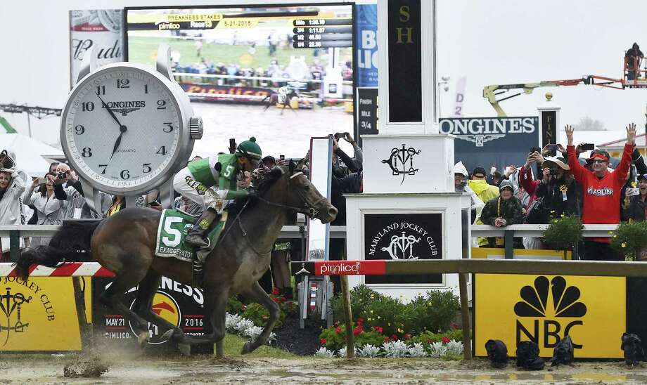 Exaggerator, with Kent Desormeaux aboard, won the Preakness Stakes at Pimlico Race Course on Saturday in Baltimore. Photo: Mike Stewart — The Associated Press   / AP