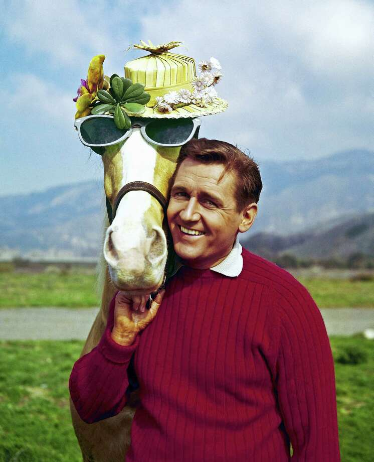 In this March 22, 1962 file photo, Mister Ed, equine star of the television series of the same name, poses with his TV co-star Alan Young on a beach in Malibu, Calif. Young, who played straight man to the talking horse in the 1960s sitcom, has died. Jaime Larkin, a spokeswoman for the Motion Picture and Television Home in Los Angeles, says that Young died Thursday, May 19, 2016. He was 96. Photo: AP Photo, File    / 1962 AP