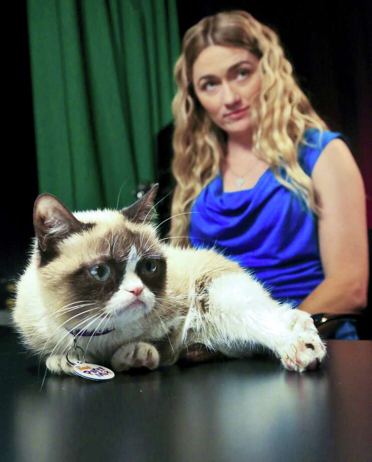 Tabatha Bundesen and her cat, Grumpy Cat, whose real name is Tardar Sauce, prepare for an interview on Friday April 4, 2014 in New York. Bundesen says that Grumpy Cat's permanently grumpy-looking face is due to feline dwarfism. (AP Photo/Bebeto Matthews) Photo: AP / AP