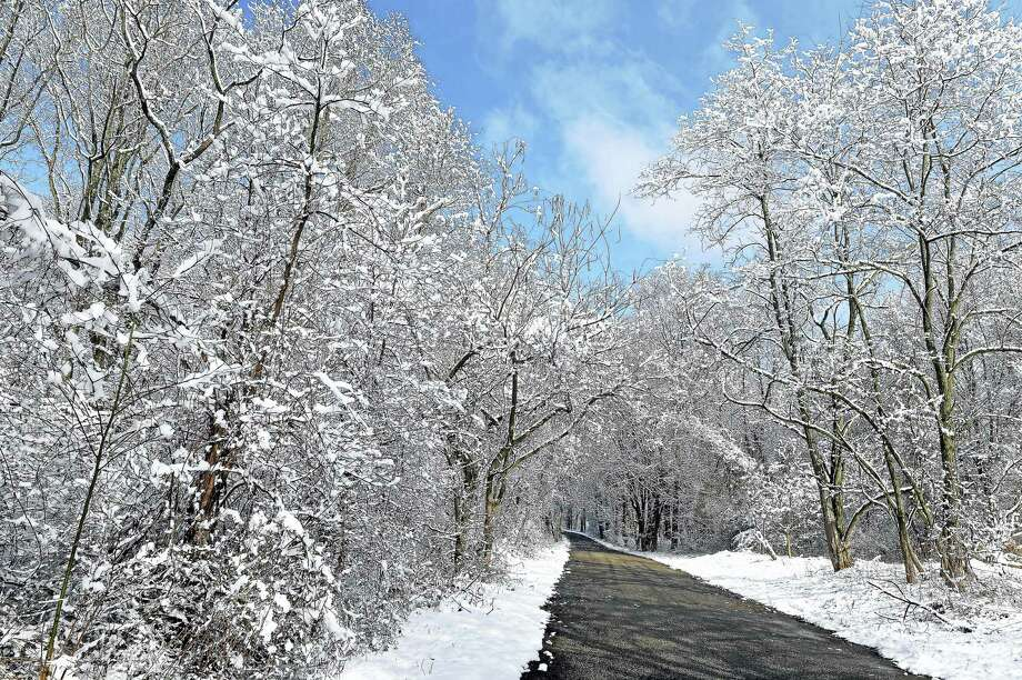 Snow covers trees on Zion Hll Rd. in Milford on on the second day of spring Monday. Photo: (Arnold Gold-New Haven Register)