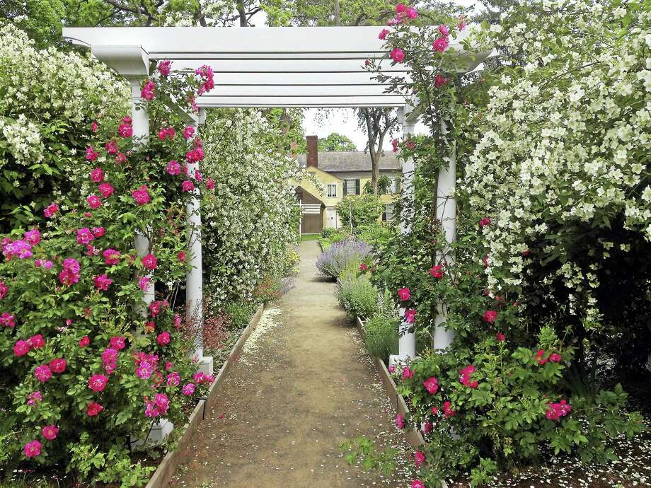 It's GardenFest time at the Florence Griswold Museum. Photo: Florence Griswold Museum Photo
