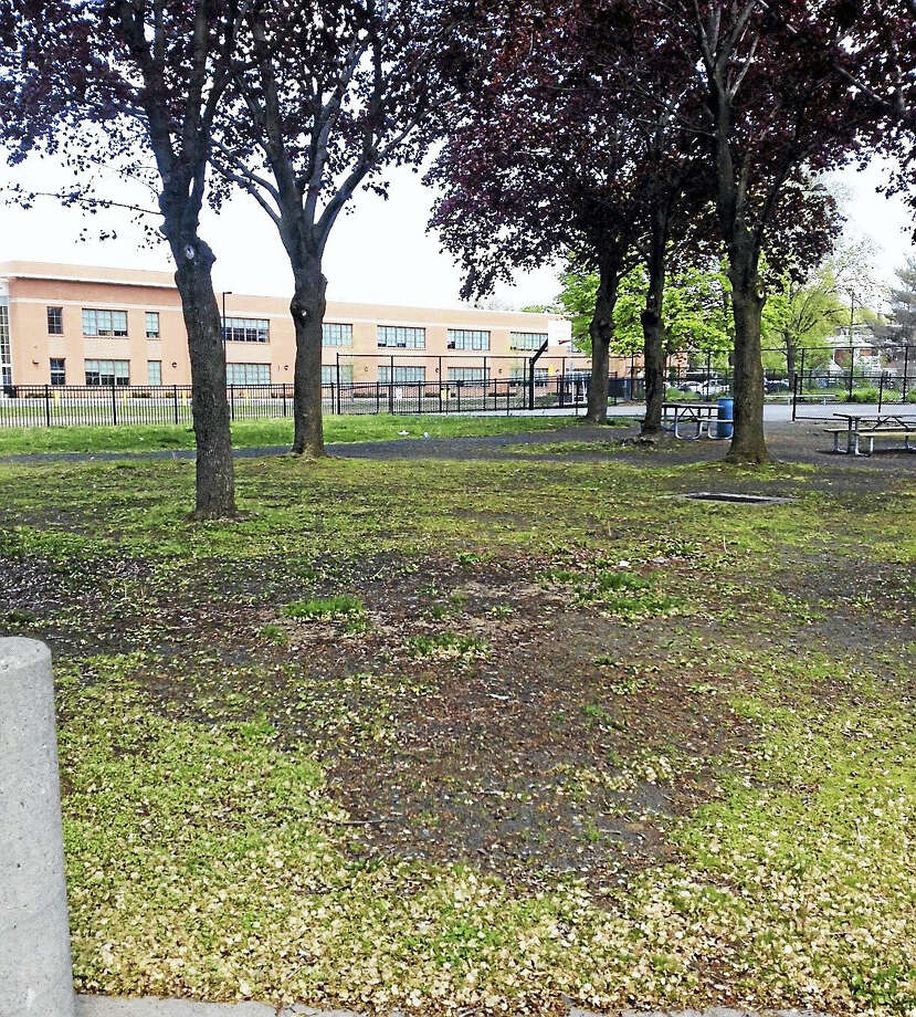 The park at the corner of Day and Chapel streets is among the areas that will be cleaned up Saturday. Photo: Mary O'Leary — New Haven Register
