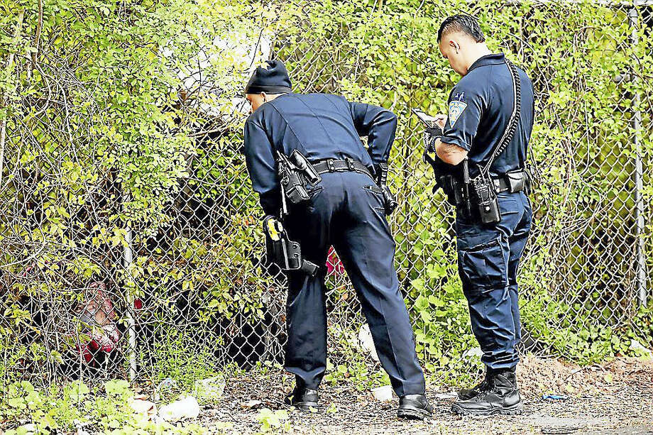 New Haven police officers get a closer look at the male black bear on Wallace Street in New Haven,Tuesday, May 10, 2016. (Catherine Avalone/New Haven Register) Photo: Journal Register Co. / New Haven RegisterThe Middletown Press