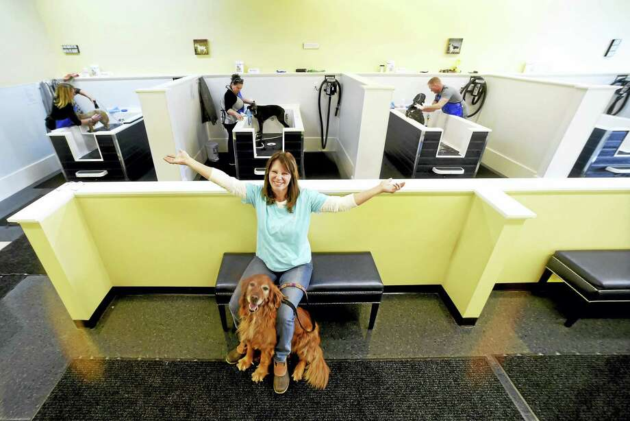 Dog laundromat to open tuesday in milford new haven register owner deb coelho with her dog abby in her new self service dog bathing business solutioingenieria Images