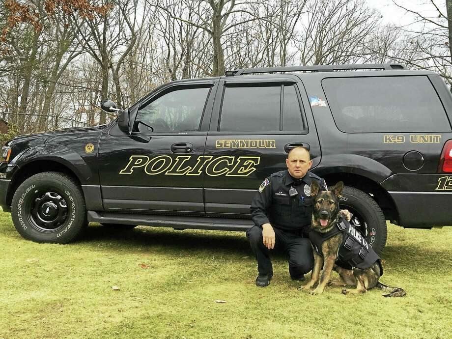 Seymour K-9 Officer John Oczkowski and Sage. Photo: CONTRIBUTED PHOTO — SEYMOUR POLICE DEPARTMENT
