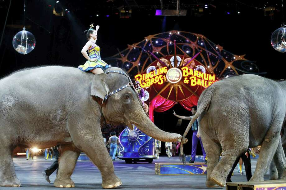 In this March 19, 2015 photo, elephants walk during a performance of the Ringling Bros. and Barnum & Bailey Circus in Washington. Ringling Bros. is scheduled to hold it's final elephant show during a performance Sunday night, May 1, 2016 in Providence, R.I. Photo: AP Photo/Alex Brandon, File   / Copyright 2016 The Associated Press. All rights reserved. This material may not be published, broadcast, rewritten or redistribu