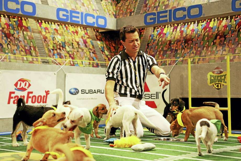 Dan Schachner, Puppy Bowl XII referee. Photo: DAMIAN STROHMEYER/ANIMAL PLANET   / Discovery Communcations