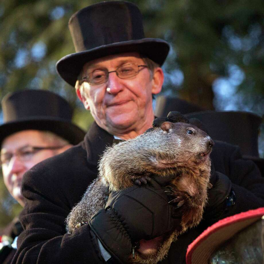 """Handler Ron Ploucha holds up Punxsutawney Phil during the annual celebration of Groundhog Day on Gobbler's Knob in Punxsutawney, Pa., Tuesday, Feb. 2, 2016.  The handlers say the furry rodent failed to see his shadow at dawn Tuesday, meaning he """"predicted"""" an early spring. Photo: Mark Pynes /PennLive.com Via AP    / PennLive.com"""