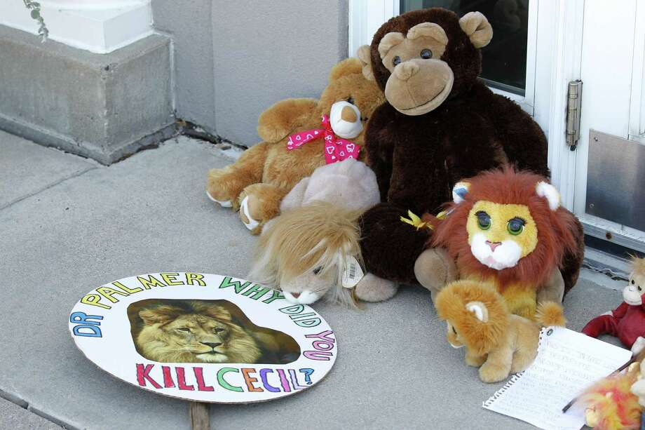 Stuffed animals and notes collect outside Dr. Walter James Palmer's dental office in Bloomington, Minn., Wednesday. Palmer reportedly paid $50,000 to track and kill Cecil, a black-maned lion, just outside Hwange National Park in Zimbabwe. Photo: AP Photo   / FR13069 AP