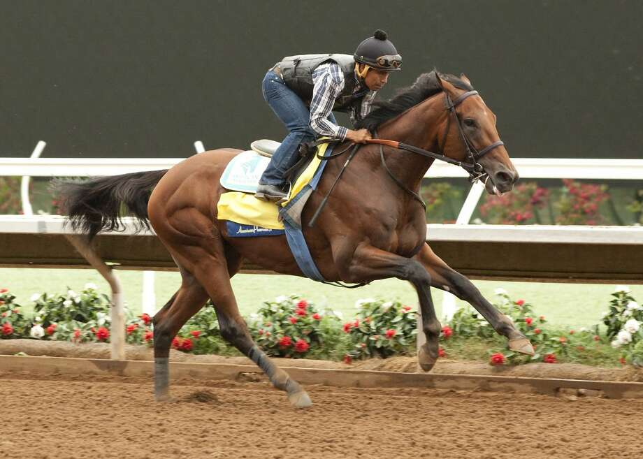 In this photo provided by Benoit Photo, Triple Crown winner American Pharoah, jockey Martin Garcia up, works Tuesday morning at Del Mar Race Track in Del Mar, Calif. Photo: The Associated Press   / BENOIT PHOTO