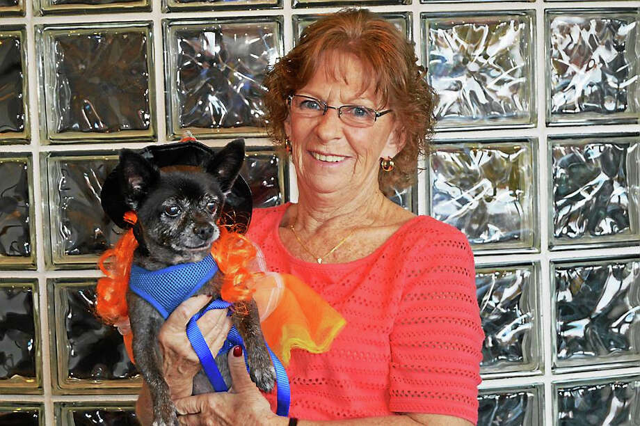 Baby Cakes, who was adopted from Woodbridge's animal shelter in 2002 by resident Janice Correia, has been named top therapy dog by Griffin Hospital. Photo: Contributed Photo