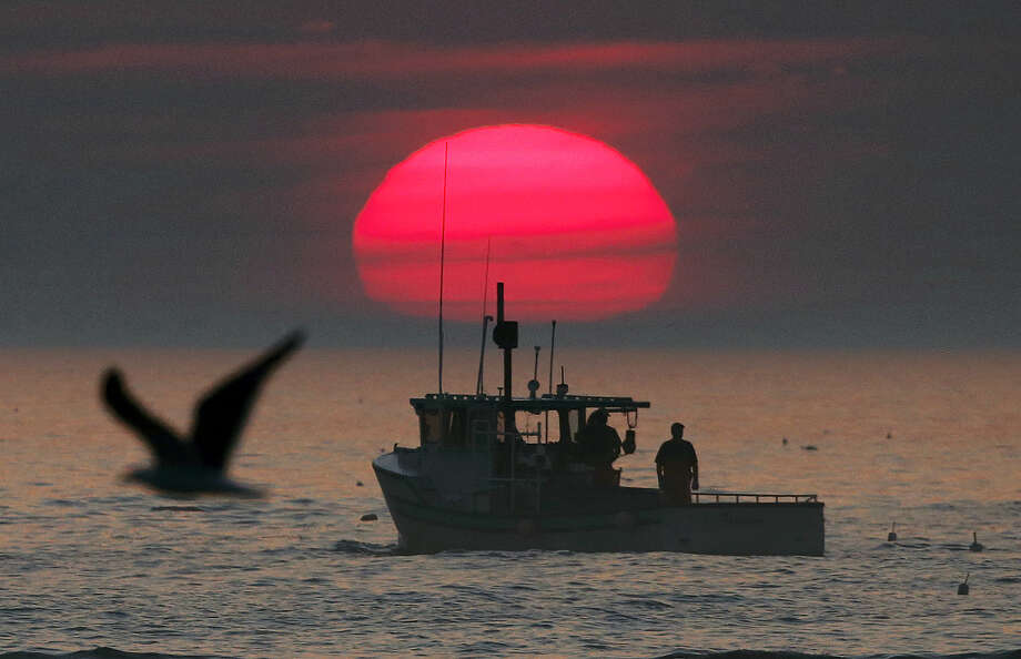 In this Aug. 17 file photo, a lobster boat heads out to sea at sunrise, off Kennebunkport, Maine. Some of the state's lobstermen are staying out on the water later in the year because of the warm winter weather. The result is that lobster is easy to come by at the market. Photo: Associated Press   / AP