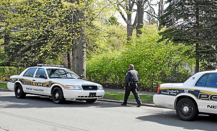 New Haven Police Department squad cars. Photo: New Haven Register File Photo