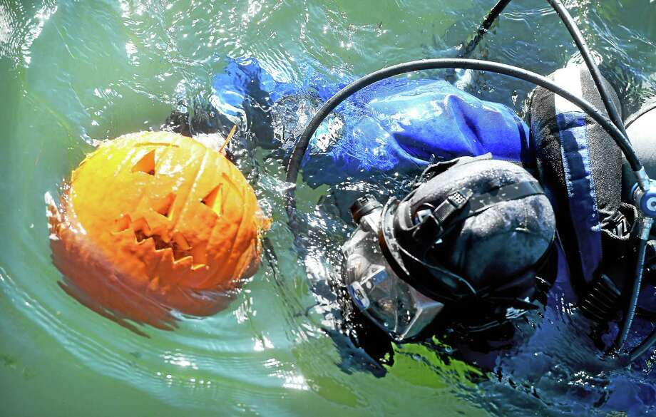 Sgt. Sean Maher of the New Haven Police Department's Underwater Search and Recovery Team swims back to shore with a pumpkin he carved under water at Morris Cove in New Haven during a training exercise Monday. Photo: Arnold Gold — New Haven Register