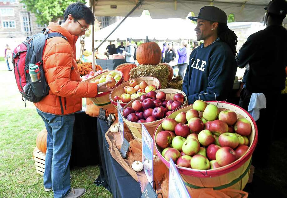 (Arnold Gold-New Haven Register)  Yale University junior Frank Chen (left) picks out an apple during the Four Pillars of Food event at Yale University's Cross Campus in New Haven on 10/24/2015.  At right is Reggie Russell of Yale Dining Services. Photo: Journal Register Co.