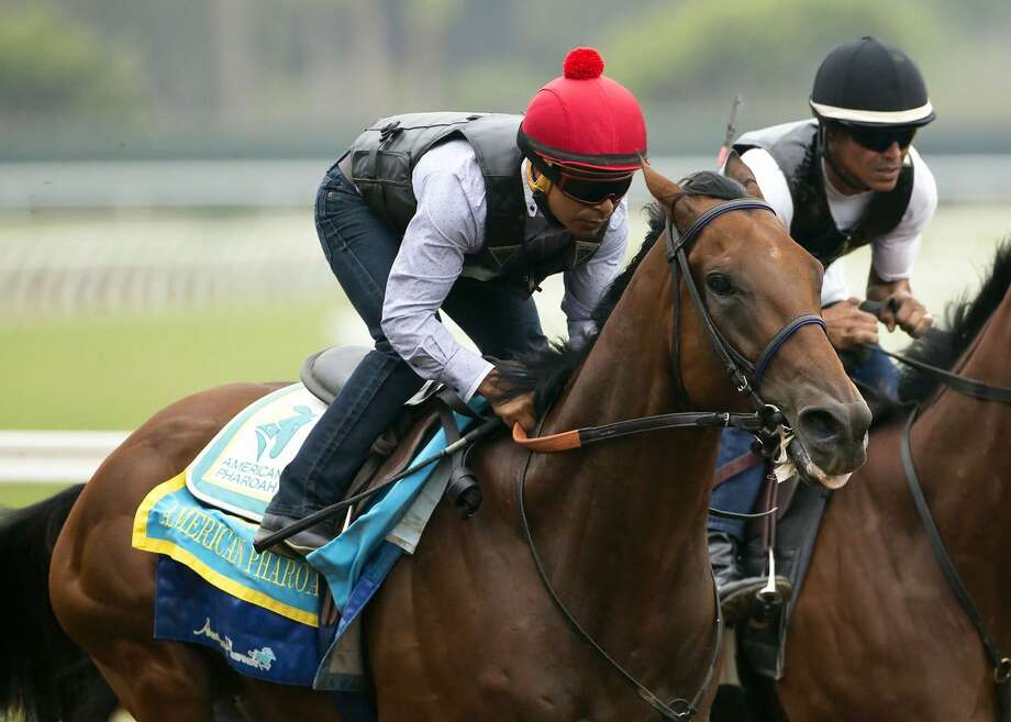 Triple Crown winner American Pharoah will run next in the Travers Stakes at a sold-out Saratoga Race Course on Saturday. Photo: The Associated Press File Photo   / Benoit Photo