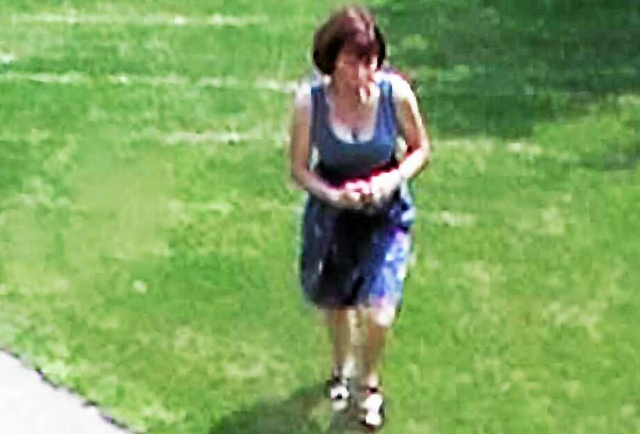A closed-circuit security camera allegedly captured an image of Paula Regan, 62, stealing a package June 11 from a porch on Farm Brook Court. Photo: Photo Courtesy Of The Hamden Police Department.