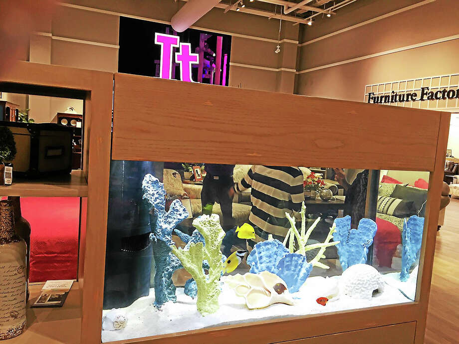 Another thing shoppers don't usually find in a furniture story, a fish tank greets Jordan's visitors. Photo: Joe Amarante - Register