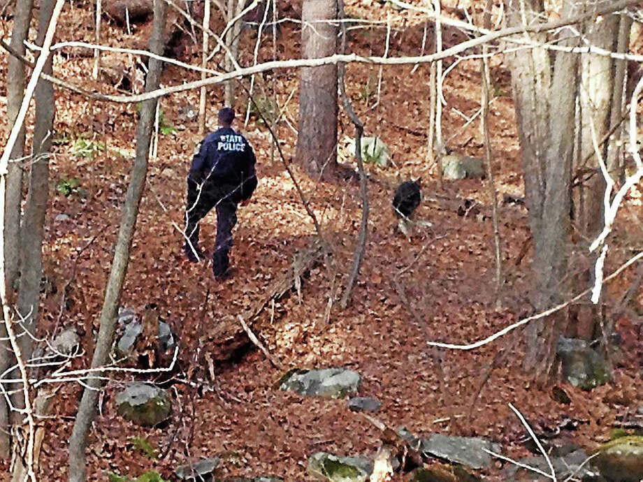 Connecticut State Police, along with a K9, search a wooded area near Wooding Hill Road in Bethany, where a male body was found early Sunday. Photo: Brian Zahn — New Haven Register