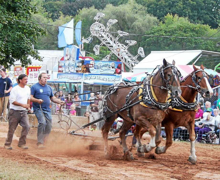 Contributed  Horse and oxen pulls are a staple event at the Guilford Fair which honors its agricultural roots since its beginning in 1859. Photo: Journal Register Co.