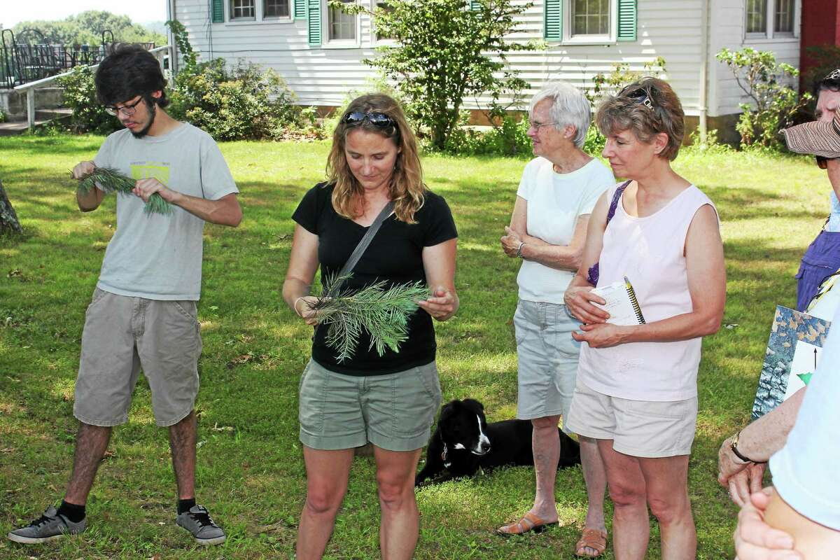 Guests take a tour of Humphrey's Evergreen Farm in Hamden Saturday.