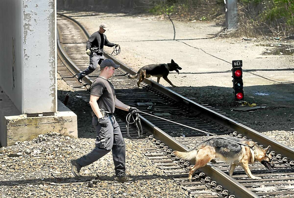 State police canine units complete a search around the State Street railroad station in New Haven Thursday afternoon, after two severed legs were discovered Wednesday and then, later in the evening, two arms were found in a plastic bag.