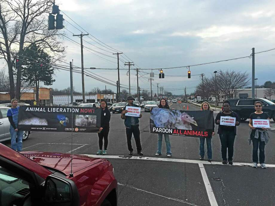 Activists with the animal rights network Direct Action Everywhere (DxE) storm the Whole Foods Market in Milford. (Contributed photo) Photo: Journal Register Co.