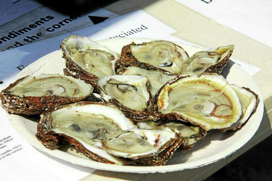 Photo: Milford Oyster Festival