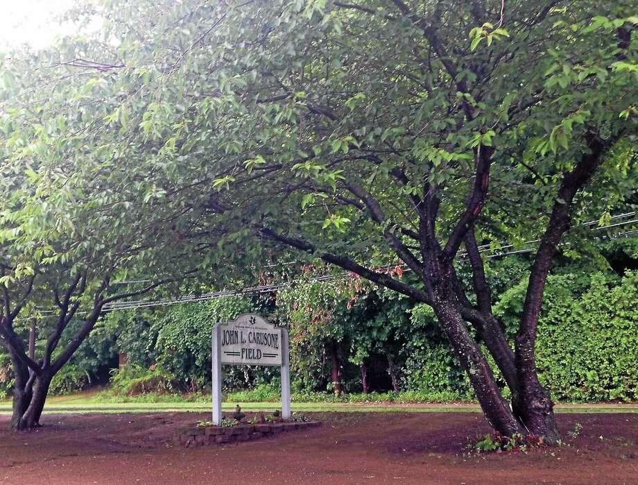 Carusone Park in Hamden is getting kid-friendly upgrades. Photo: Kate RamunNi — New Haven Register