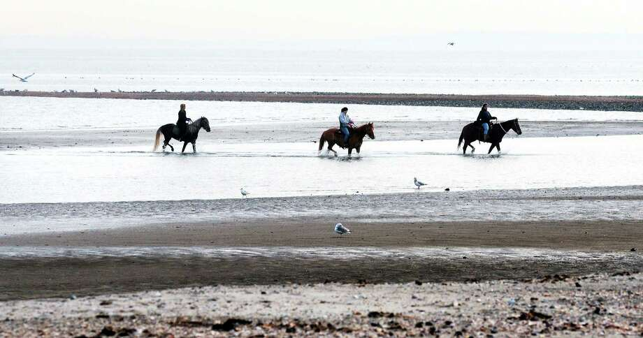 Left to right, Jenny Corso of Derby, Lucy Reynolds of Seymour and Trish Perrotti of Orange ride horses at Silver Sands State Park in Milford during low tide on 1/13/2014. Photo: Arnold Gold -- New Haven Register