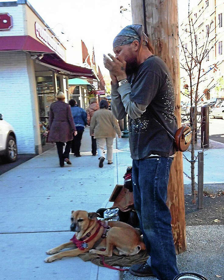 Ethan Clarkson and his trusty dog, Barley, on Whitney Avenue in New Haven. Photo: Randall Beach — New Haven Register
